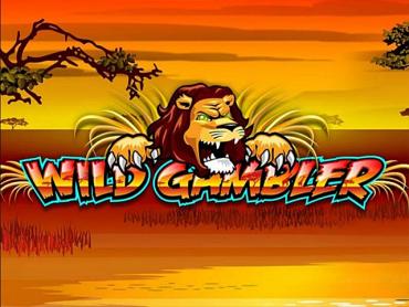 Wild Gambler slot online za darmo